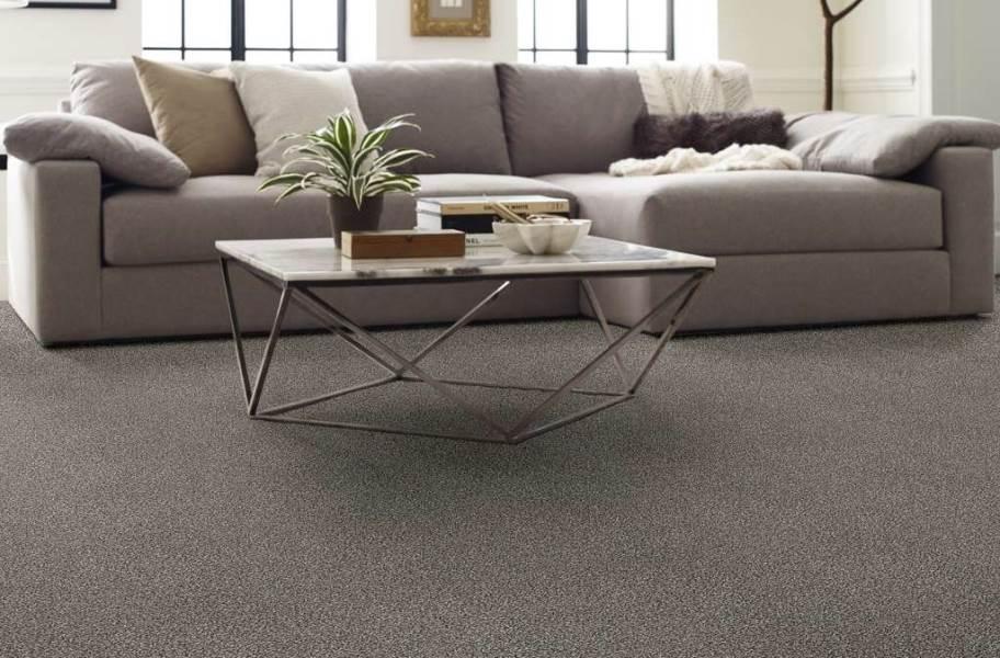 Shaw Perpetual I Waterproof Carpet - Fog