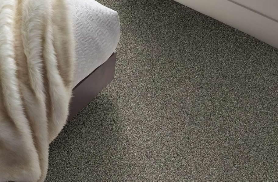 Shaw Perpetual I Waterproof Carpet - Portobello