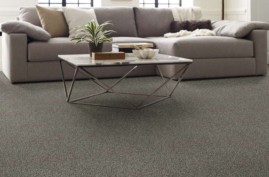 Shaw Perpetual I Waterproof Carpet - Shadow