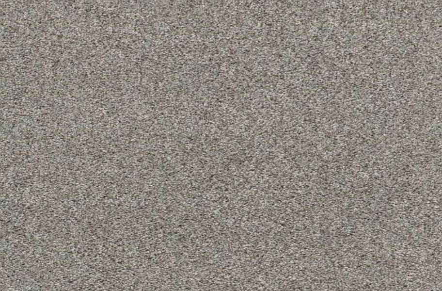 Shaw Calm Serenity I Waterproof Carpet - Split Sediment