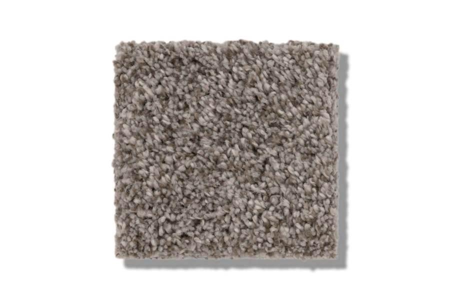 Shaw Calm Serenity I Waterproof Carpet - Desert View - Texture