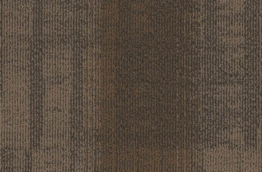 J&J Flooring Well Versed Carpet Tile - Hardy