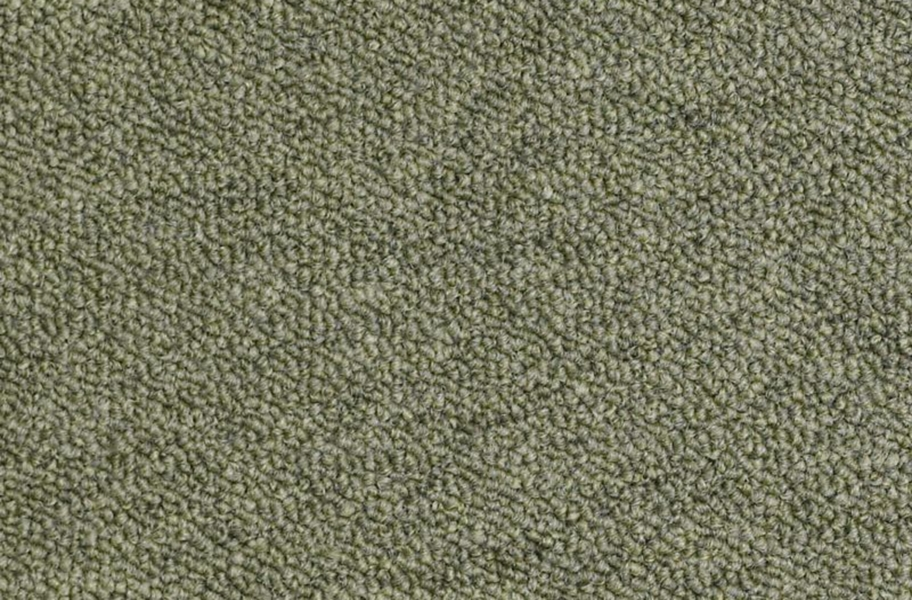Shaw Capital III Carpet Tile - Distinguished