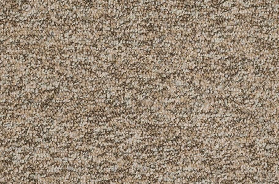 Shaw No Limits Carpet Tile - Boundaries