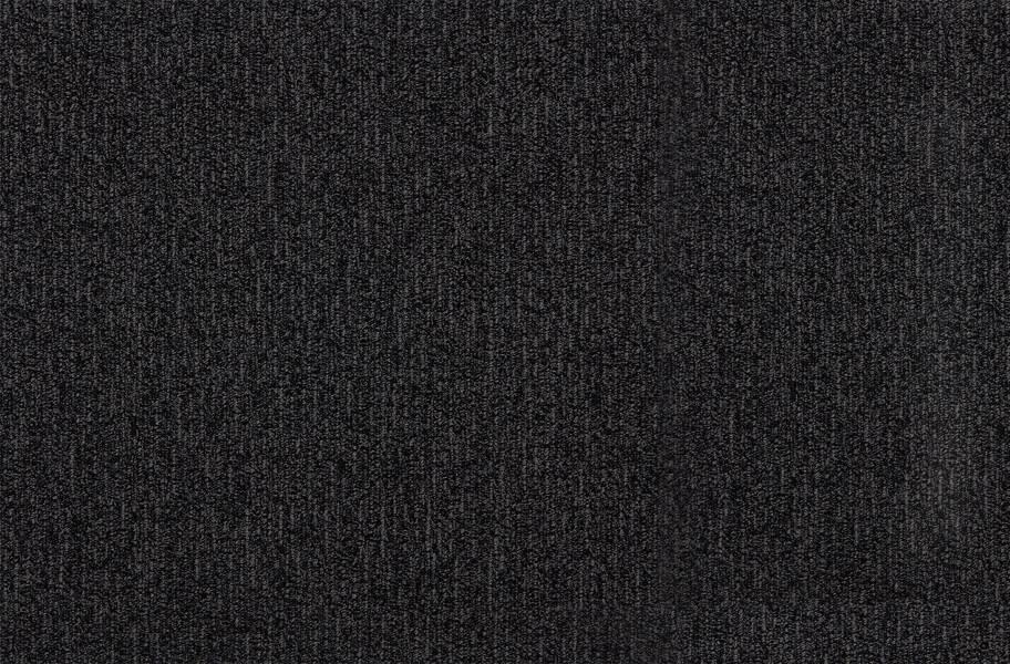 Access Walk Off Carpet Tile - Admit