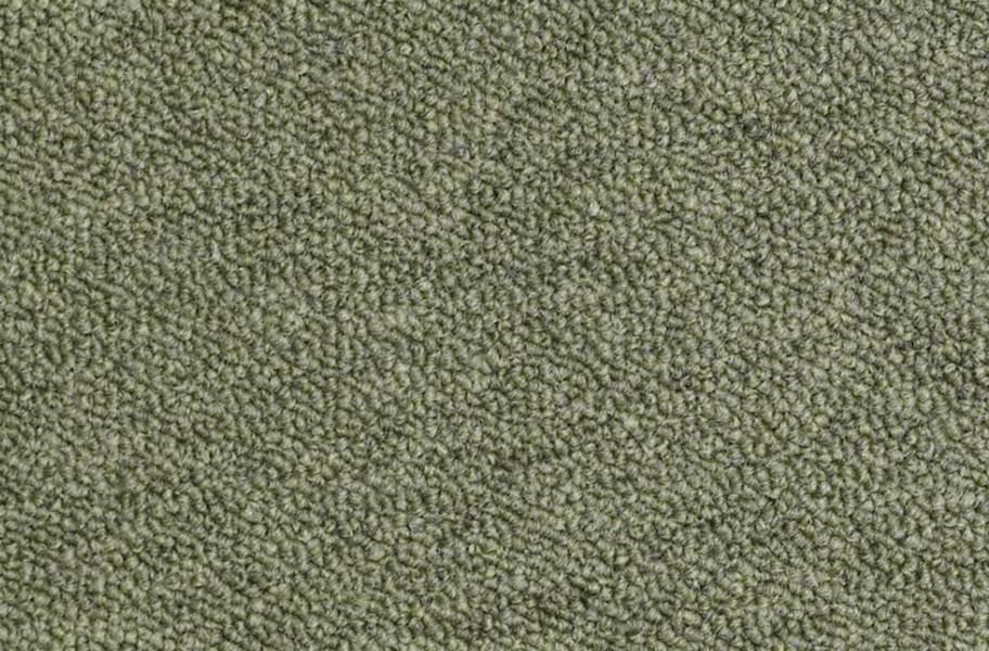 Shaw Capital III Carpet Tile - Distinguished