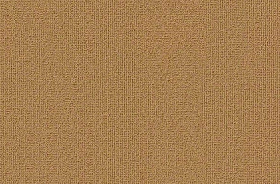 Shaw Color Accents Carpet Tile - Brasserie