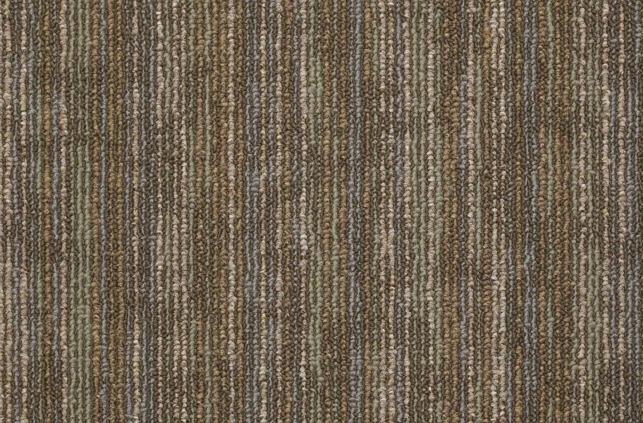 Shaw Hook Up Carpet Tile - Energize