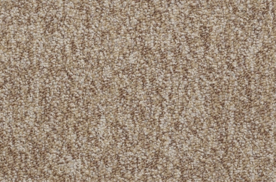 Shaw No Limits Carpet Tile - Potential