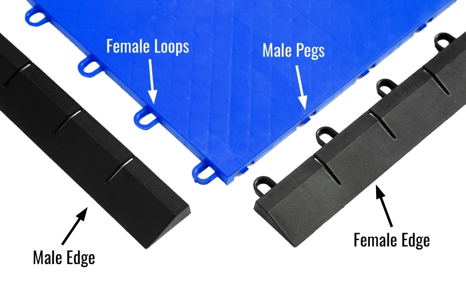 ProGym Female Edge
