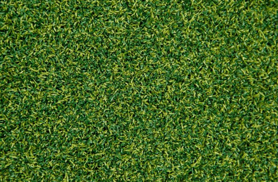 Putting Green Turf Rolls - Putting Green Turf Rolls