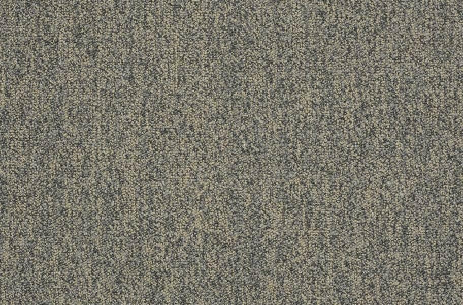 Shaw Scoreboard II Carpet - 10 to Go
