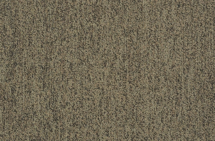 Shaw Scoreboard II Carpet - Time Out