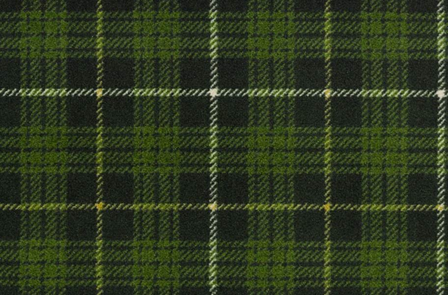 Joy Carpets Bit O' Scotch Carpet - Pine