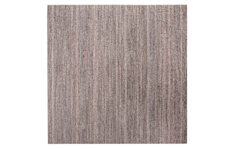 Shaw Intellect Carpet Tile