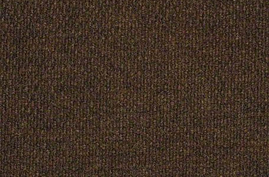 Shaw Commons II Outdoor Carpet - Cinnabark