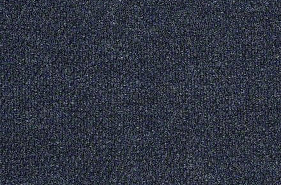Shaw Succession II Outdoor Carpet - Laguna