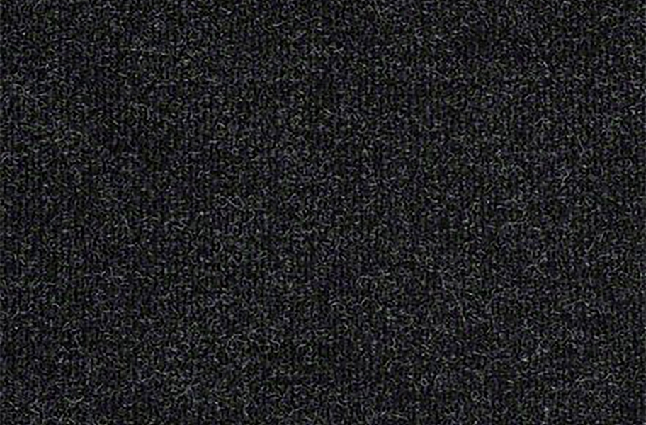 Shaw Succession II Outdoor Carpet - After Dark