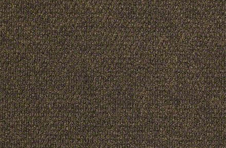 Shaw Succession II Outdoor Carpet - French Roast