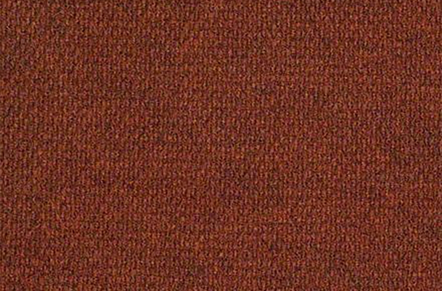 Shaw Succession II Outdoor Carpet - Glazed
