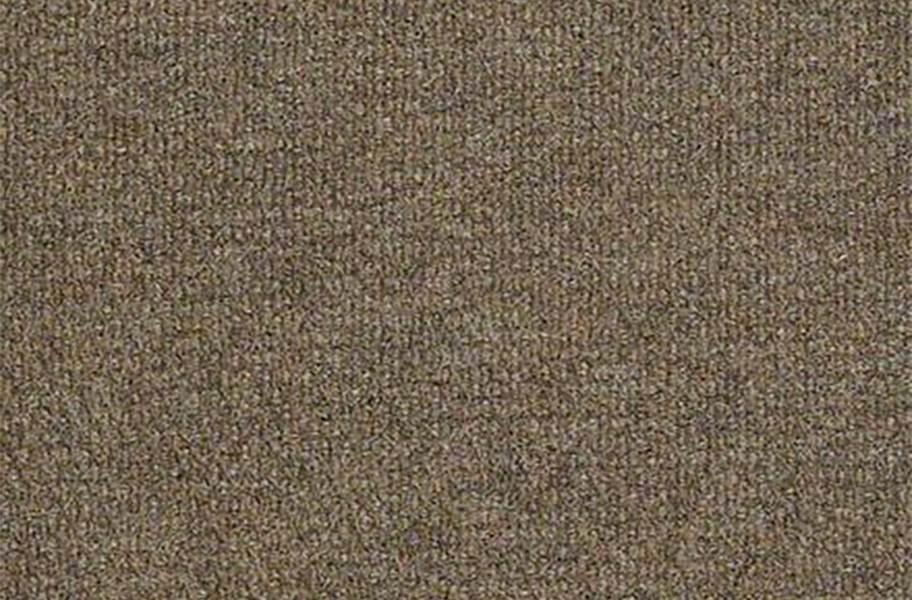 Shaw Succession II Outdoor Carpet - Sierra