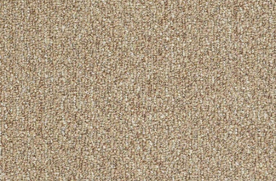 Shaw Natural Path Outdoor Carpet - Tree House