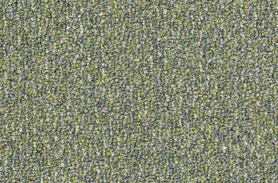 Shaw Natural Path Outdoor Carpet - Riverview
