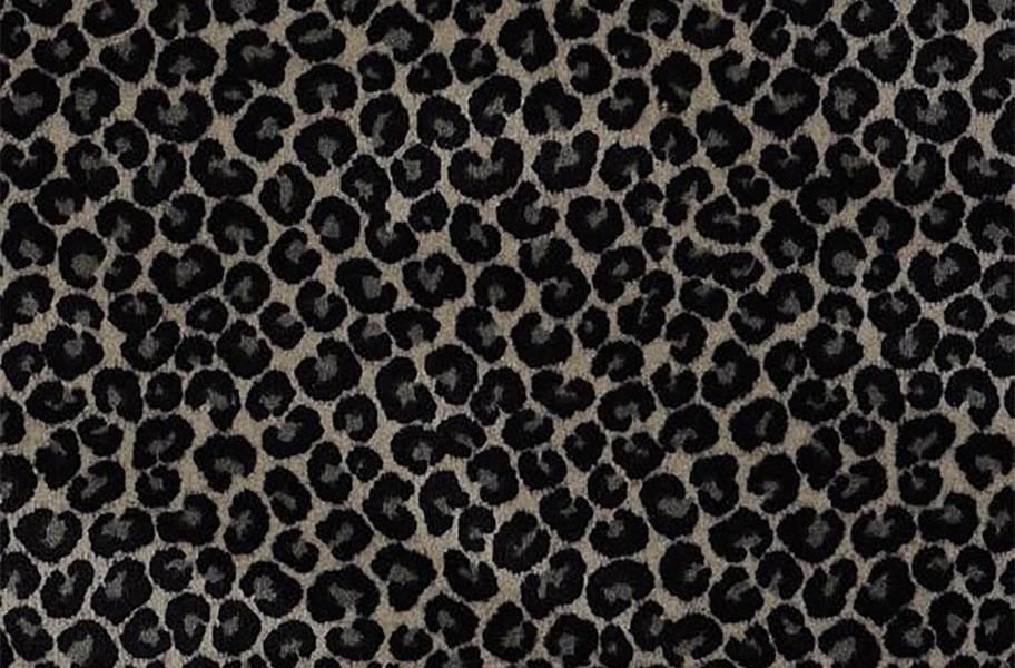Shaw Cheetah - Go Getter