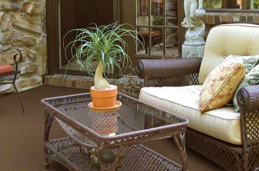 Shaw Gardenscape Outdoor Carpet - Copper