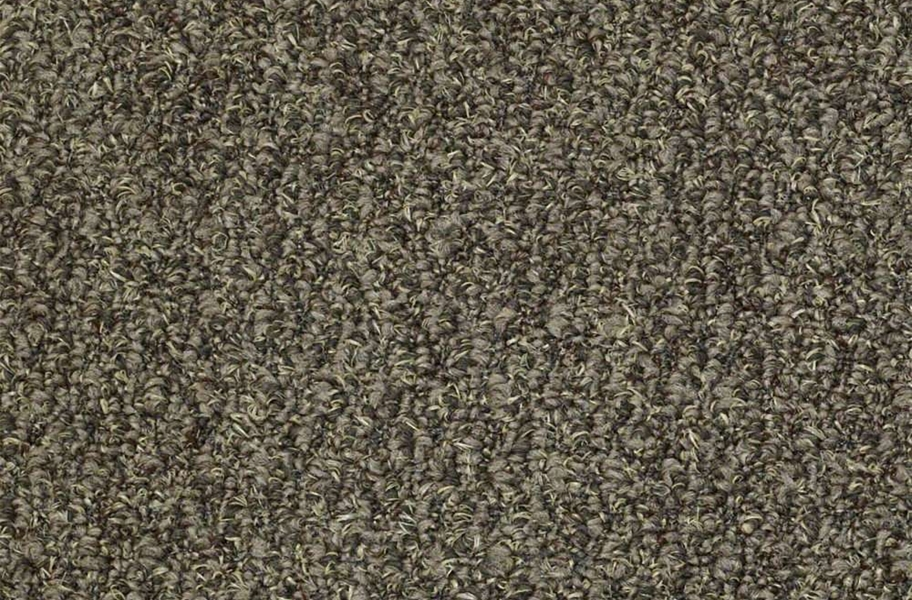 Shaw Gardenscape Outdoor Carpet - Burnt Bark