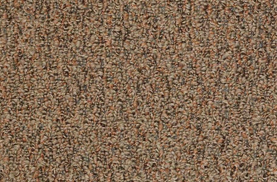 Shaw Gardenscape Outdoor Carpet - Rustic Copper
