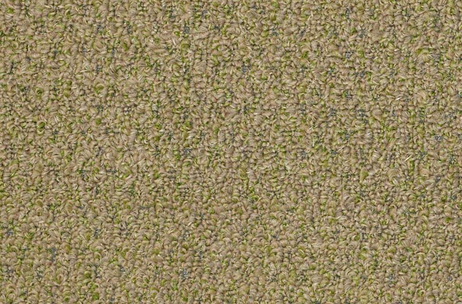 Shaw Gardenscape Outdoor Carpet - Wheat Grass