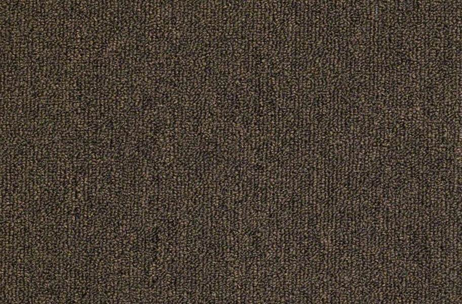 Shaw Outside Agenda Outdoor Carpet - Chicory