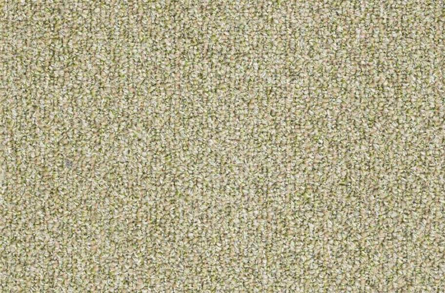 Shaw Natural Path Outdoor Carpet - Seedling