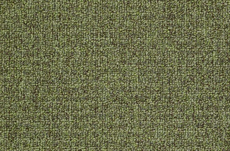 Shaw Casual Boucle Outdoor Carpet - Fernwood