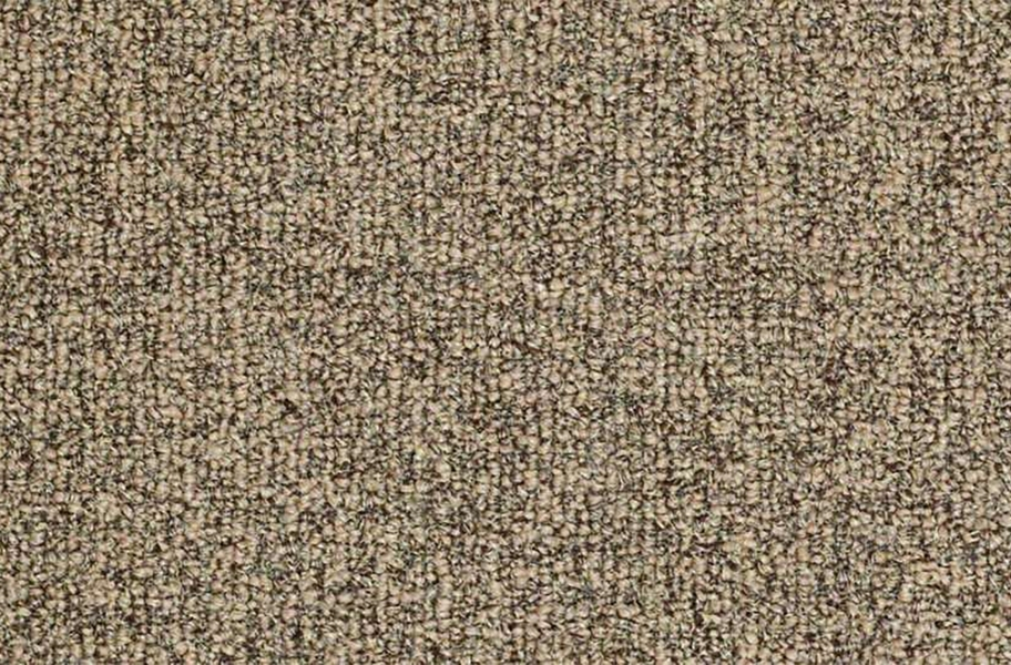 Shaw Casual Boucle Outdoor Carpet - Natural Twine