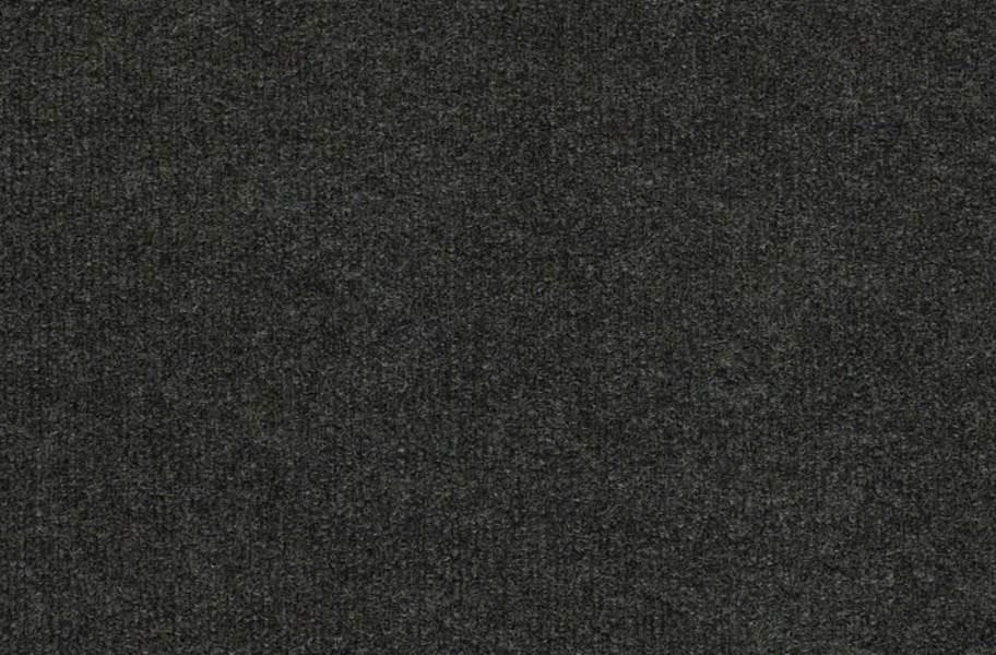 Shaw Backdrop I Outdoor Carpet - Anvil