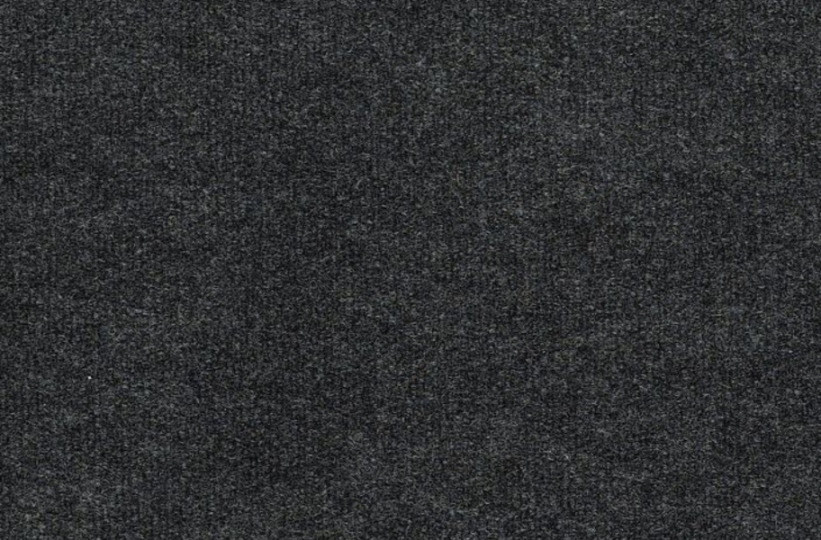 Shaw Backdrop I Outdoor Carpet - Ashes