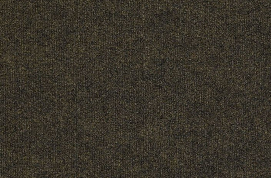 Shaw Backdrop I Outdoor Carpet - Bracken
