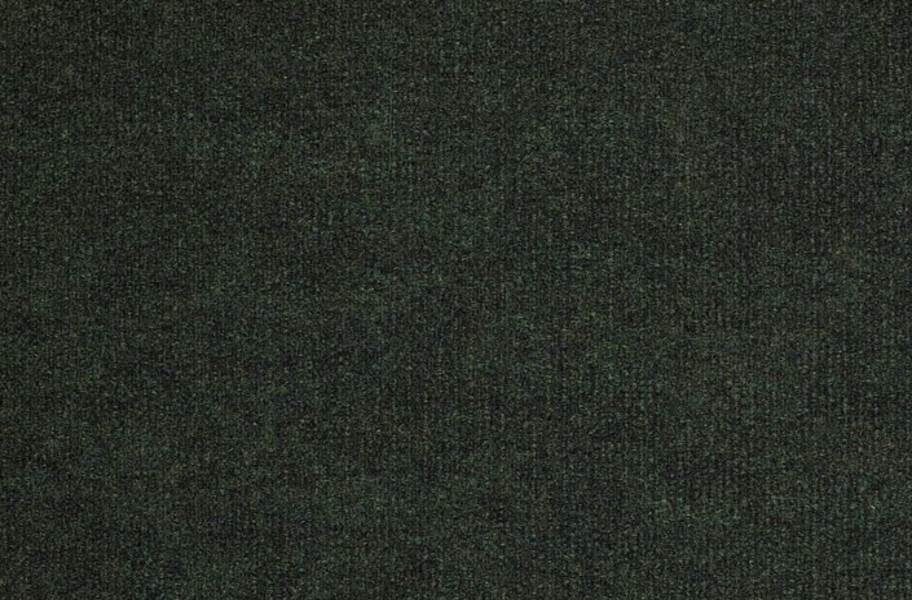 Shaw Backdrop I Outdoor Carpet - Forest Night