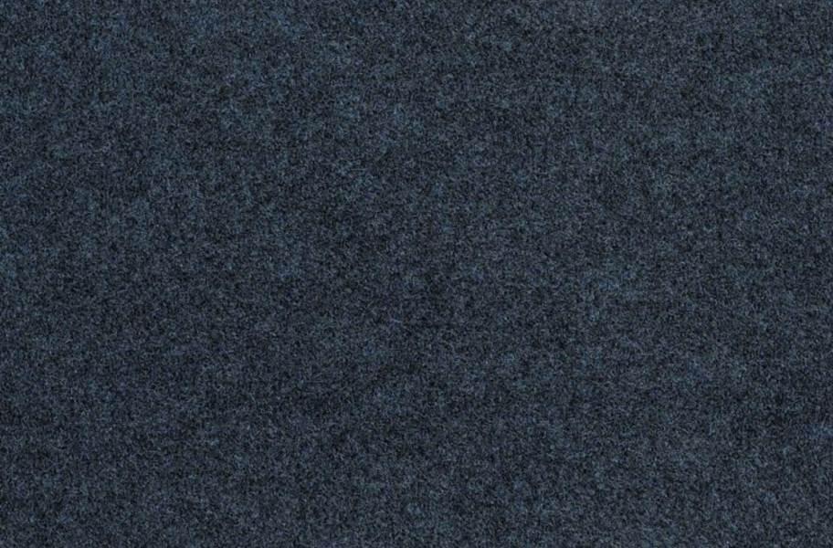 Shaw Softscape I Outdoor Carpet - Artesian Well