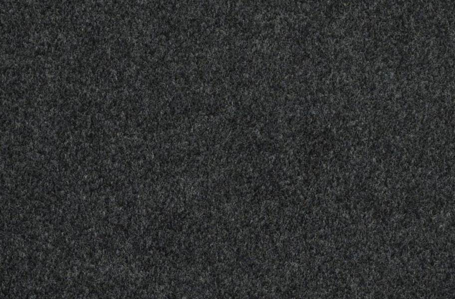 Shaw Softscape I Outdoor Carpet - Ashes