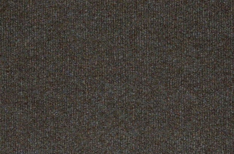 Shaw Windsurf Outdoor Carpet - Hummingbird