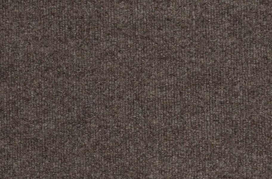 Shaw Windsurf Outdoor Carpet - Driftwood