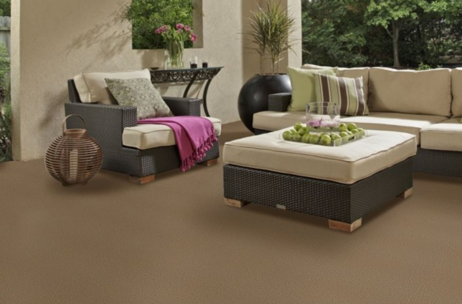 Shaw Bedecked Outdoor Carpet - Fawn