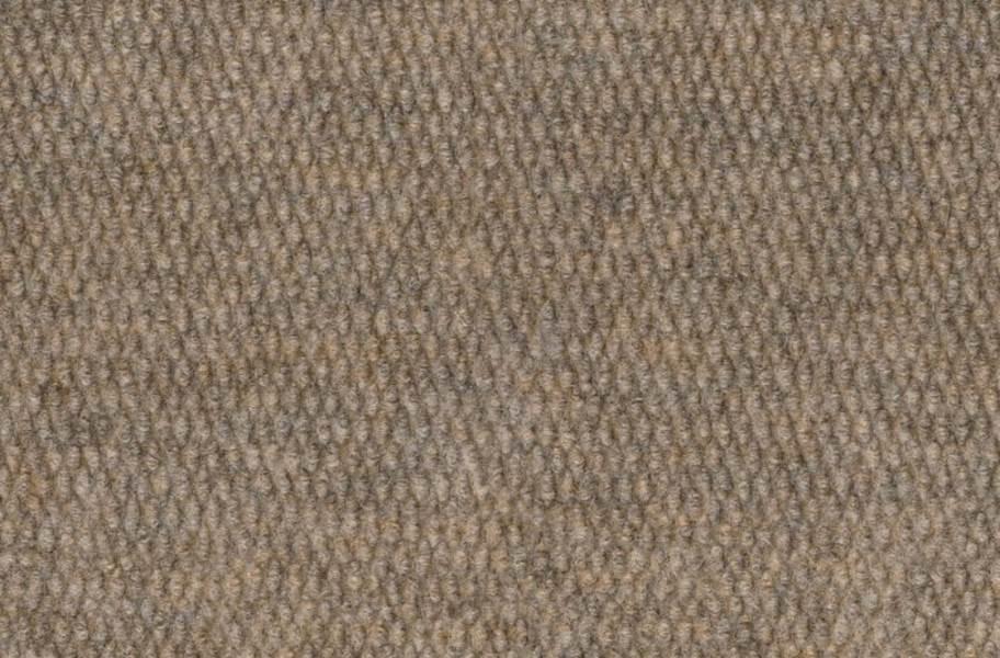 Shaw Bedecked Outdoor Carpet - Hopsack