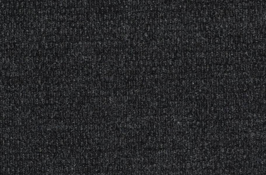 Shaw Bedecked Outdoor Carpet - Marcasite