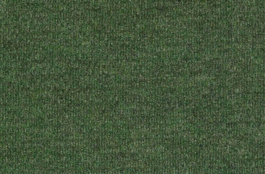 Shaw Bedecked Outdoor Carpet - Simply Green