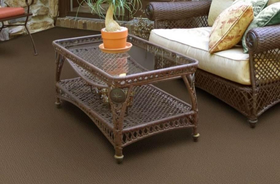 Shaw Bedecked Outdoor Carpet - Bramble