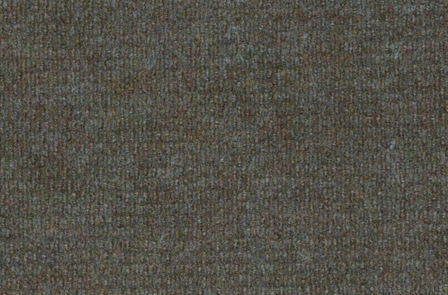Shaw Bedecked Outdoor Carpet - Hummingbird